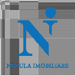 Necula Imobiliare